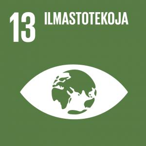 Kestävän kehityksen tavoitteet: 13 ilmastotekoja.